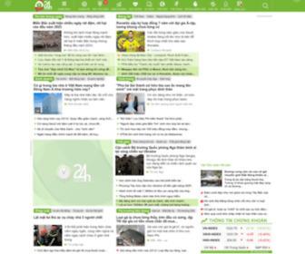 24h.com.vn - Tin tức bóng đá, thể thao, giải trí | Đọc báo tin tức 24h online mới nhất