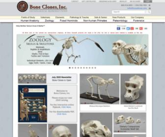 Boneclone.com - Bone Clones Inc. Osteological Replicas