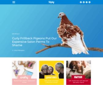 Diply.com - Diply