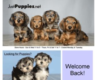 Justpuppies.net - JustPuppies.net - Home to Better Puppies