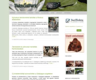 Teknospark.hu - TeknősPark – …merülj el a teknősök világában