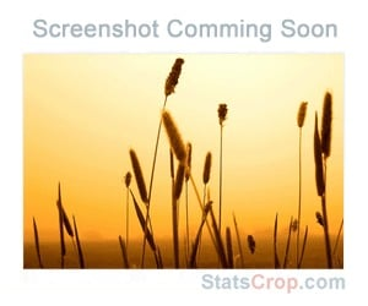 The Spot Blog